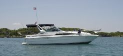 1989 Sea Ray 340 Express Cruiser