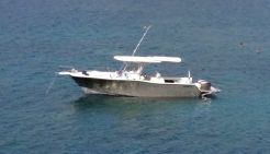 2004 Grady-White 306 Bimini CC