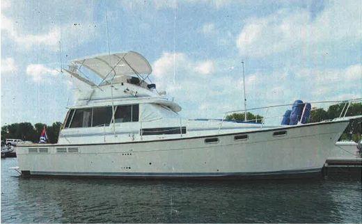 1988 Bayliner 3888 Motoryacht