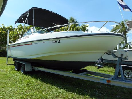 1996 Boston Whaler Dauntless 20