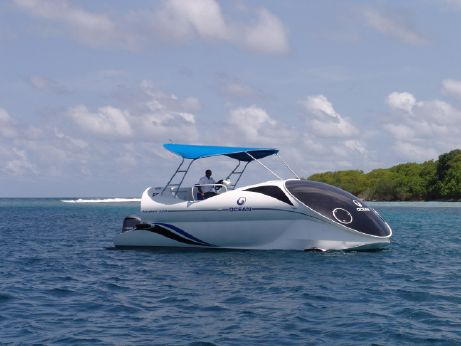 2017 Paritetboat Glass Bottom Boat LOOKER 320