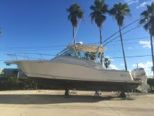 2012 Scout 350 Abaco