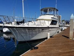 photo of  45' Hatteras 45 Convertible