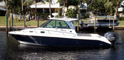 2009 Everglades 320 EX