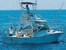 1991 Albemarle 320 Express Fisherman