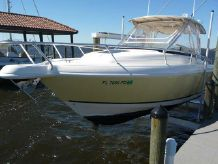 2004 Intrepid 310 Walkaround