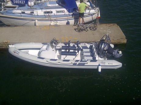 2011 Ribeye A600