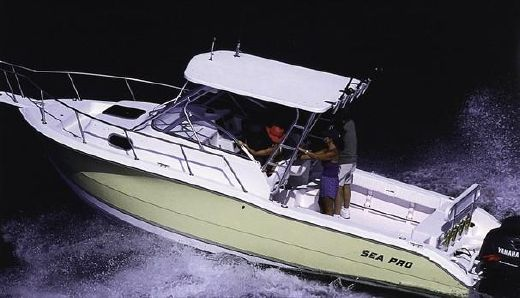 2000 Sea Pro 255 Walk Around