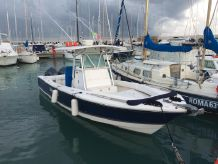 2006 Regulator 29 FS