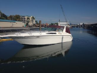 1991 Sea Ray 370 Express Cruiser