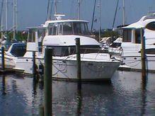 1999 Carver 504 Cockpit Motor Yacht