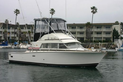 1981 Bertram 33 Sport Fisherman
