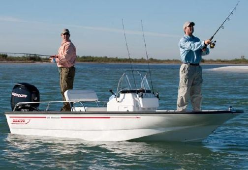 2015 Boston Whaler 150 Montauk