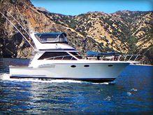 1988 Californian Convertible