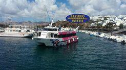 2005 Catamaran Dalmau