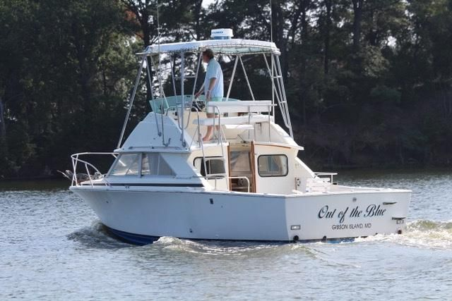 1977 Bertram 28 Flybridge CRUISER Power Boat For Sale - www