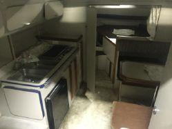 photo of  30' Cruisers Yachts 300 Rogue