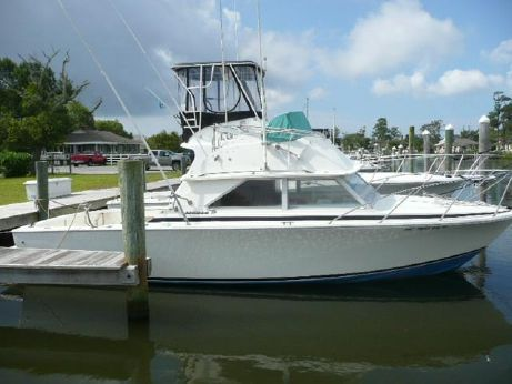 1972 Bertram 28 Flybridge CRUISER