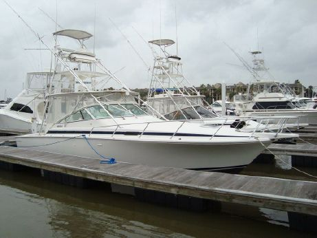 1996 Bertram 36 Moppie