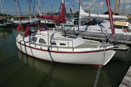 2005 Midget 31