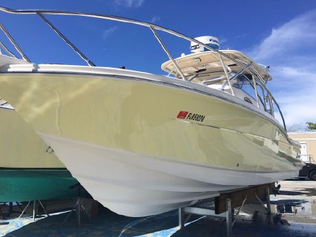 2007 Scout Abaco 262