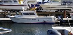 2015 Sea Sport 2400 XL Island Edition