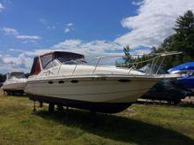 1996 Thompson Santa Cruz 3100
