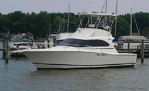 1994 Luhrs 350 tournement