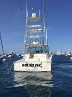 photo of  36' Albemarle 360 Express Fisherman