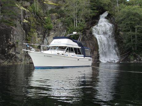 1984 Bayliner 3288 Motoryacht