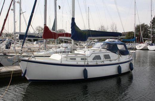 2008 Midget 31