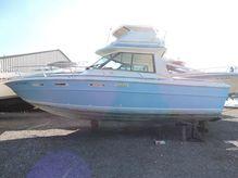1977 Sea Ray 300 Sedan Bridge