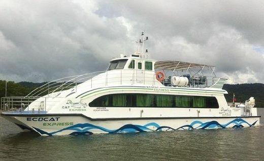 2011 Custom Catamaran Ecocat