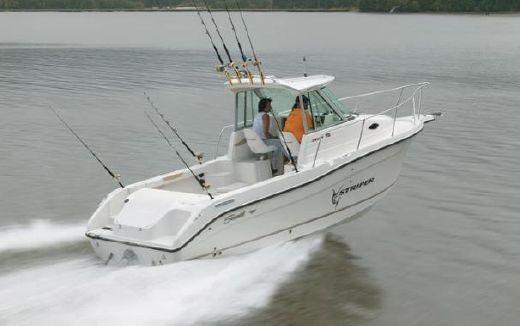 2005 Seaswirl Striper 2601 Walkaround I/O