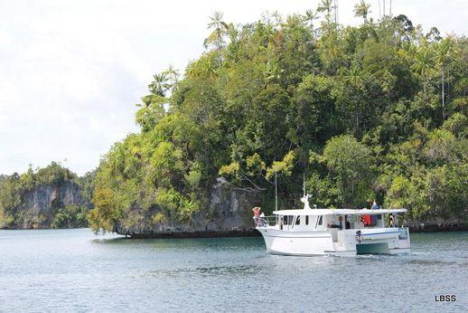 2011 Bruce Harris Power Catamaran