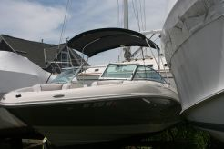 2010 Sea Ray 210 SEL