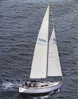 1981 C&C 37