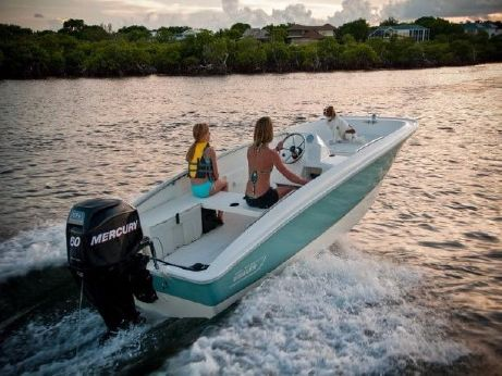 2017 Boston Whaler 150 Super Sport