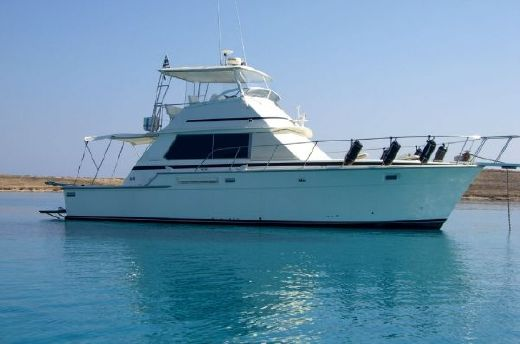 1978 Bertram 42 Flybridge Motor Yacht