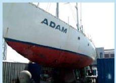 2006 Adams Adam Proyecto