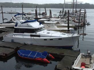 1988 Bayliner 3818 Motoryacht