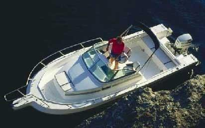 2000 White Shark 236C