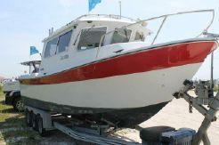 2000 Seasport Sea Master COHO