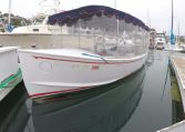 photo of 20' Duffy 20