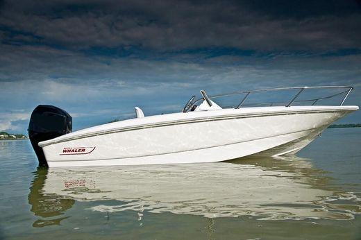 2009 Boston Whaler 150 Sport