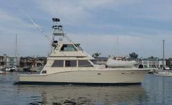 1983 Hatteras Convertible Enclosed Bridge w/Tower
