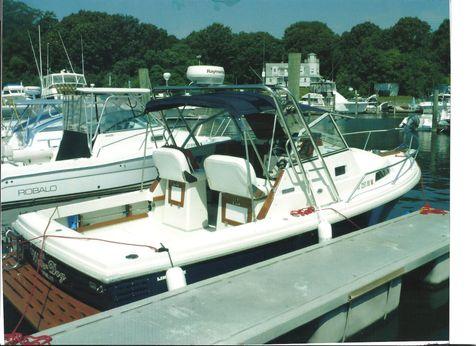 2006 Limestone 24 Large Cabin Express Cruiser