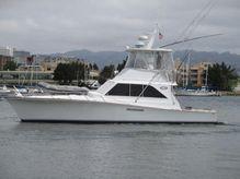 1981 Ocean Yachts 42 Sportfisher