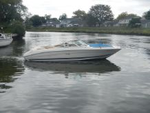 1999 Sea Ray 230 bowrider