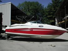 2010 Sea Ray 260 Sundeck-10779